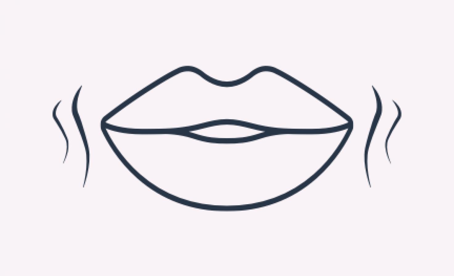 Schematische Darstellung Lippen